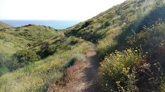 Ray Miller Trail Malibu